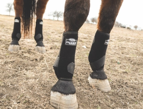 Give 'Em the Boot: Leg Protection